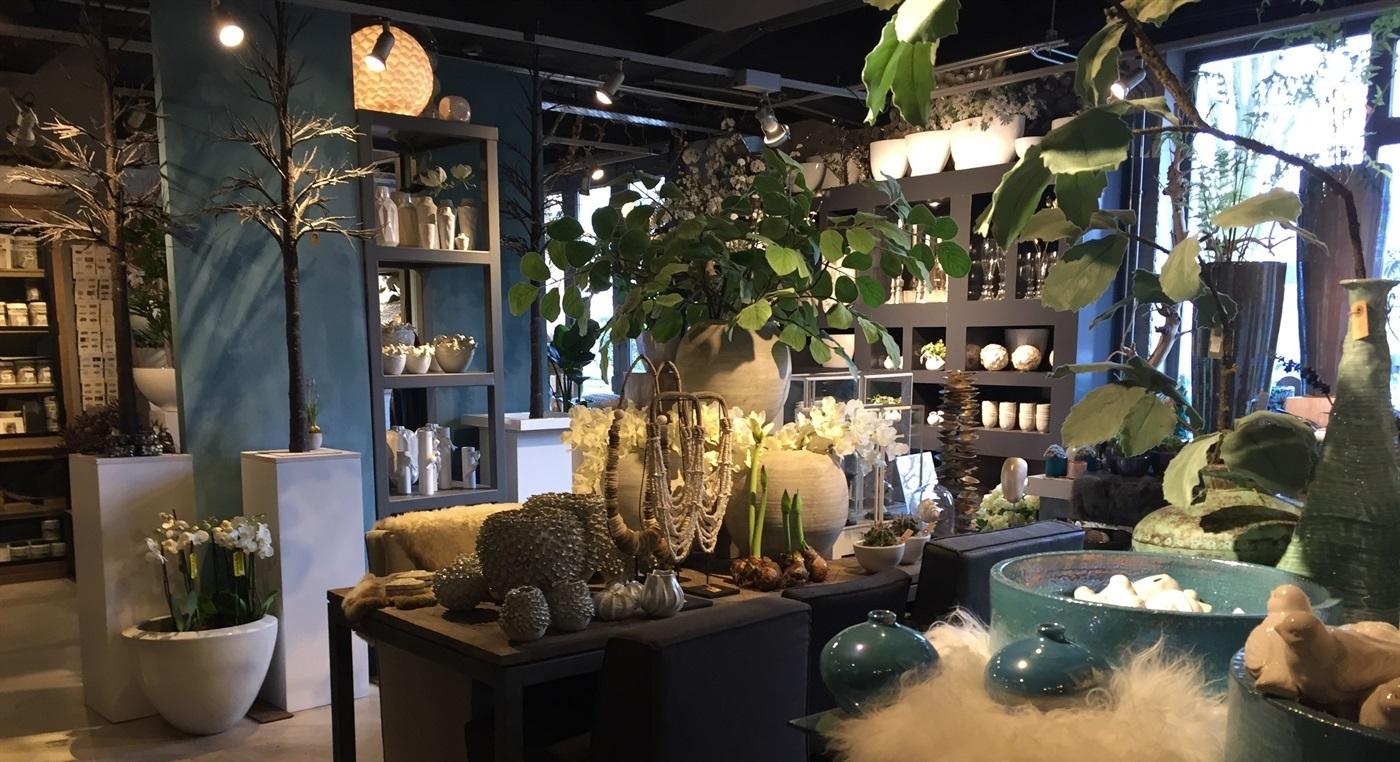 Violien bloemen for Interieur winkels